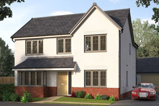 """Thumbnail Detached house for sale in """"The Rainbrook"""" at East Kilbride, Glasgow"""