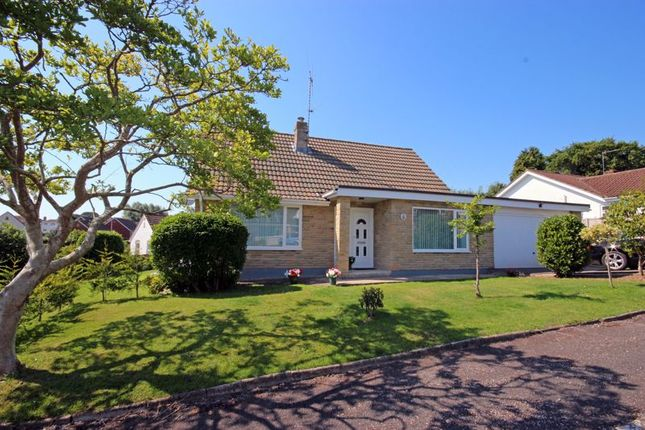 Thumbnail Detached bungalow for sale in Seaton Down Close, Seaton