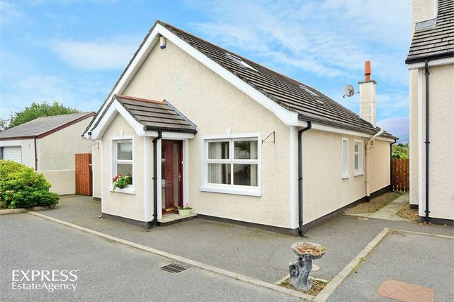 Thumbnail Detached house for sale in Maghera Close, Castlewellan, County Down
