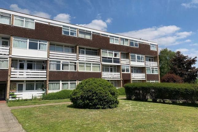 Thumbnail Flat to rent in Hillview Court, Woking