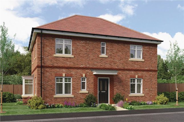 "Thumbnail Detached house for sale in ""Stevenson"" at Hastings Close, Chesterfield"