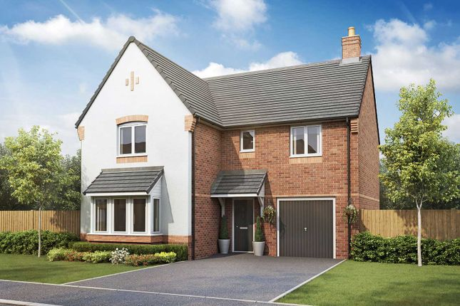 """Thumbnail Detached house for sale in """"The Grainger"""" at Hastings Road, Grendon, Atherstone"""
