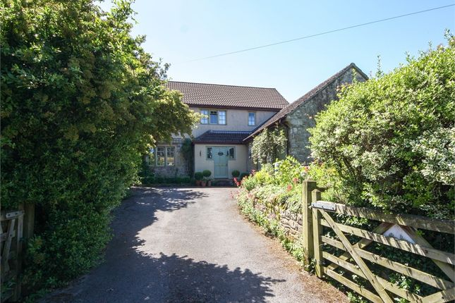 Thumbnail Detached house for sale in Campbell Cottage, Plud Street, Wedmore, Somerset