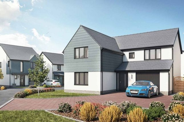 Thumbnail Detached house for sale in Bishops Wood Grove, Newton, Swansea