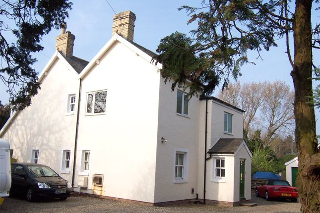 Thumbnail Detached house to rent in Abbotts Lane, Penyffordd, Chester