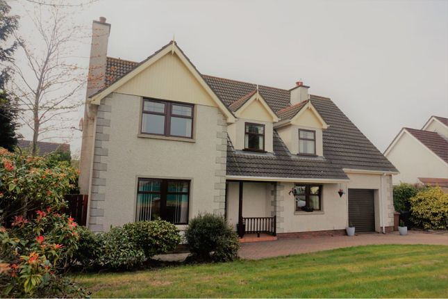 Thumbnail Detached house for sale in Rose Park, Limavady