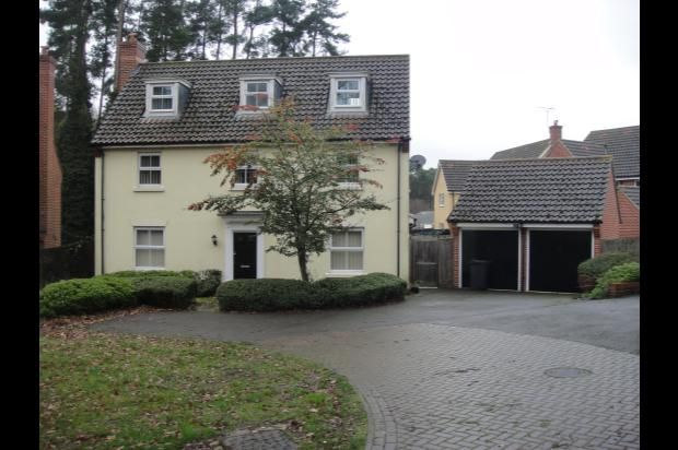 Thumbnail Detached house to rent in Walton Way, Brandon, Suffolk