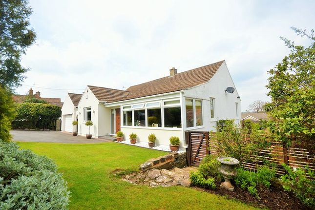 Thumbnail Detached bungalow for sale in The Street, Compton Martin, Bristol