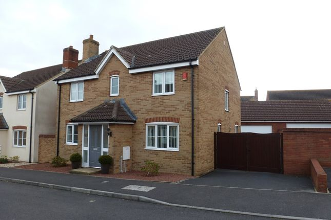 Thumbnail Detached house for sale in Fountains Close, Yeovil