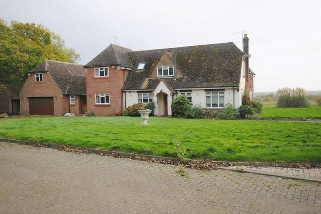 Thumbnail Detached house for sale in Rushden Road, Sharnbrook, Bedford