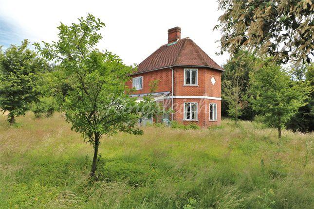 Thumbnail Detached house for sale in Bargate Lane, Dedham, Colchester, Essex