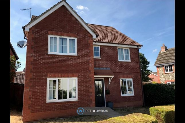 Thumbnail Detached house to rent in Lynn Close, Thorpe St. Andrew, Norwich