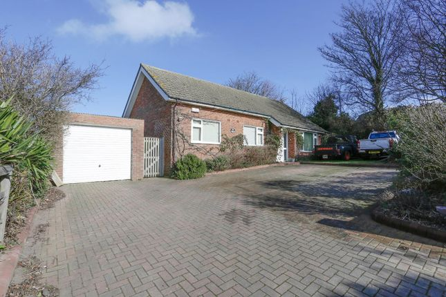Thumbnail Detached bungalow for sale in Sutton Road, Ripple, Deal