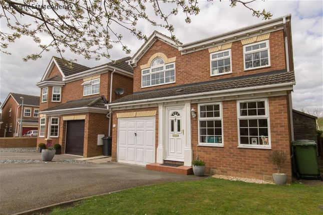Thumbnail Property for sale in Pastures Court, Messingham, Scunthorpe