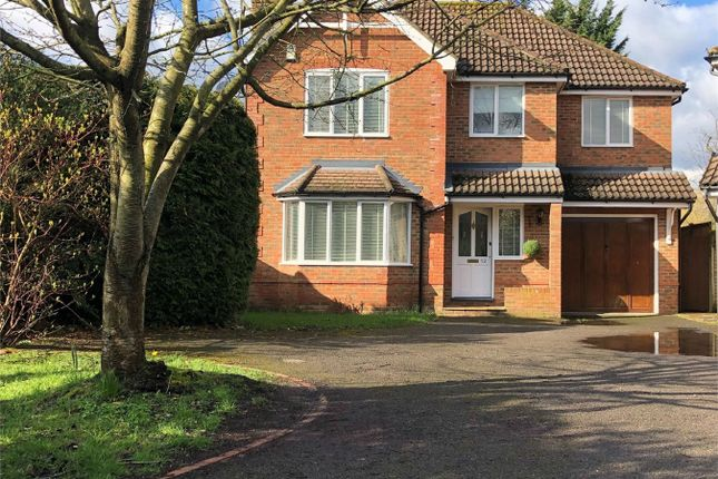 Thumbnail Detached house for sale in Orchard Rise, Shirley, Croydon