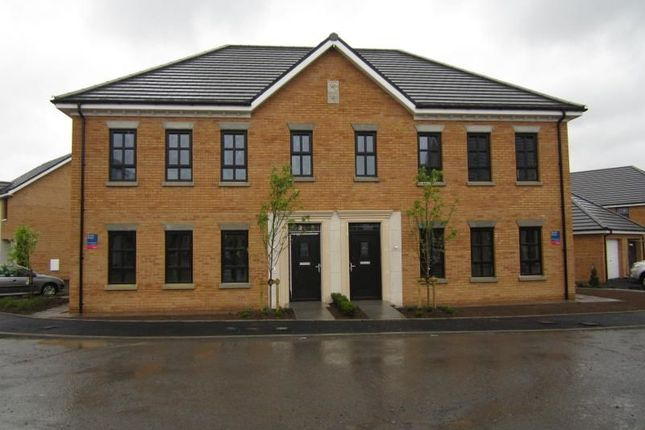 Thumbnail Flat to rent in Mornington Gardens, Lisburn