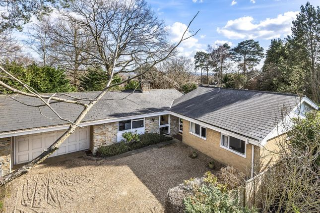 Thumbnail Detached bungalow for sale in Hook Heath Road, Hook Heath, Woking