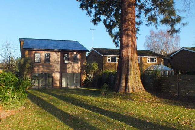 Thumbnail Detached house to rent in Milner Drive, Cobham
