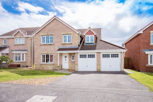 Thumbnail Detached house for sale in Petrel Way, Dunfermline