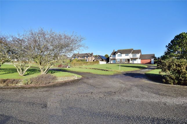 Thumbnail Detached house for sale in Camelford