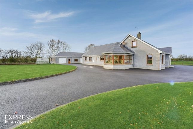 Thumbnail Detached house for sale in Cloughwater Road, Ballymena, County Antrim