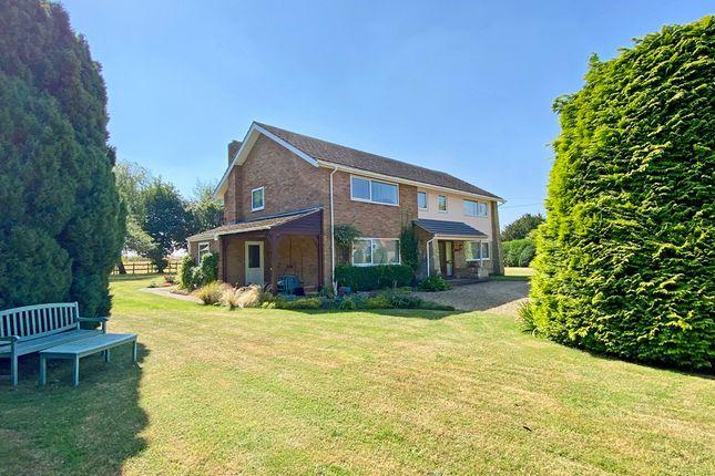 Thumbnail Detached house for sale in Chapel Lane, Roke, Wallingford