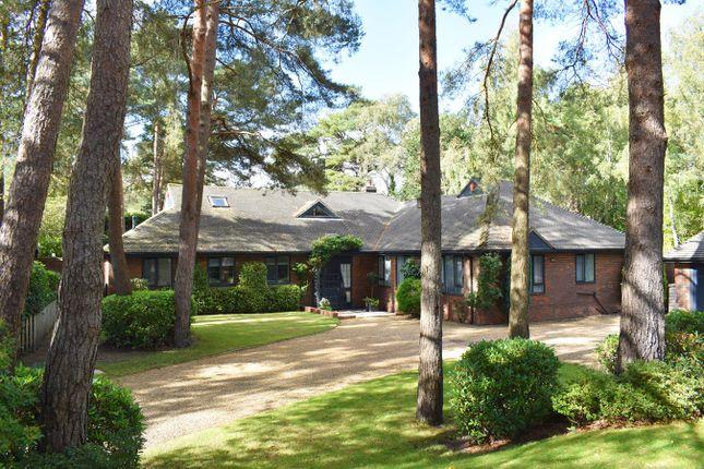 Detached bungalow for sale in Avon Castle Drive, Ringwood