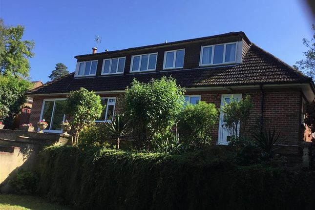 Thumbnail Detached house for sale in Linden Road, Headley Down, Bordon, Hampshire