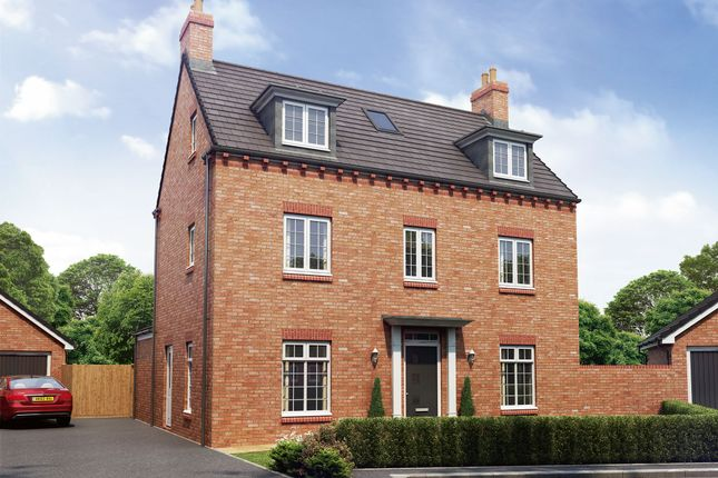 "Thumbnail Detached house for sale in ""The Alexandra"" at Hartburn, Morpeth"