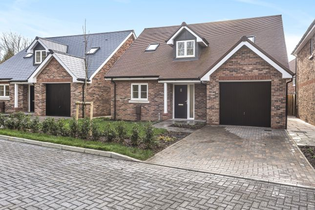 Thumbnail Detached bungalow for sale in Humphrey Place, Potters Gate, Chichester