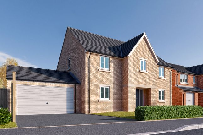 "Thumbnail Detached house for sale in ""The Rochester"" at St. Thomas's Way, Green Hammerton, York"