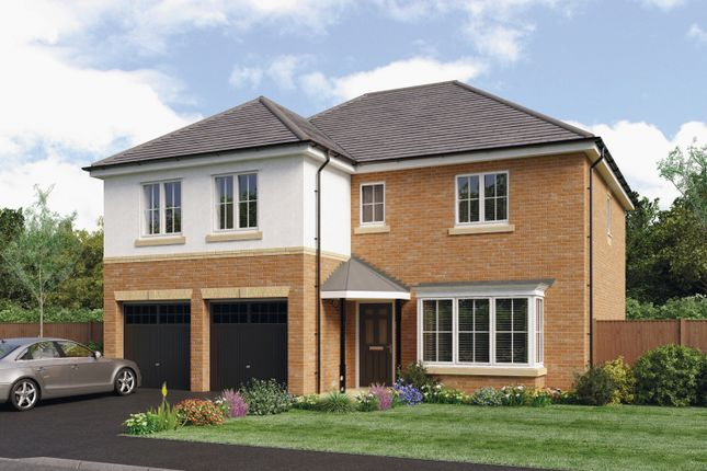 Thumbnail Detached house for sale in The Jura, Barley Meadows, Cramlington, Northumberland