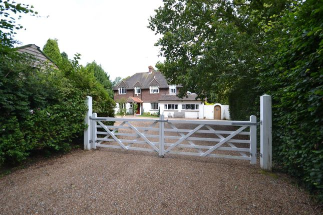 Thumbnail Detached house for sale in Balcombe Green, Sedlescombe, Battle