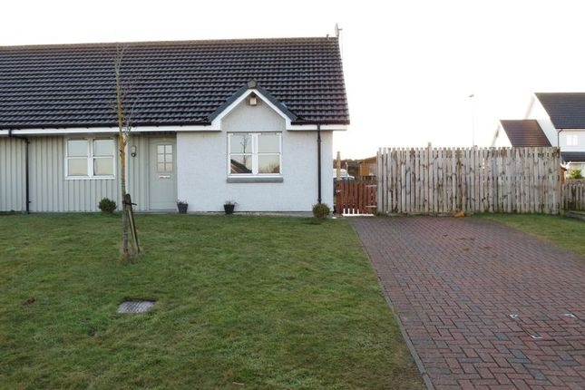 Thumbnail Bungalow for sale in Juniper Drive, Tain
