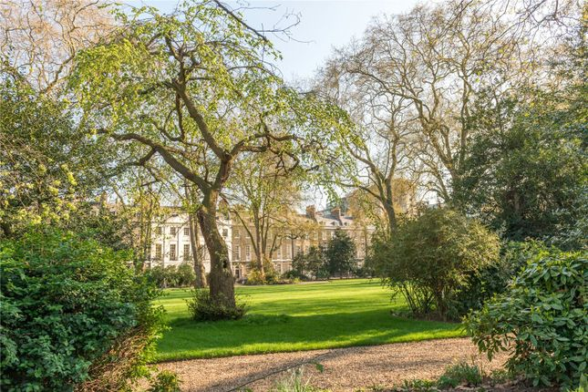 1 bed flat to rent in Morwell Street, Bloomsbury, London WC1B