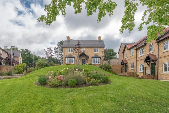 Thumbnail Detached house for sale in Lawther Walk, Shotley Bridge