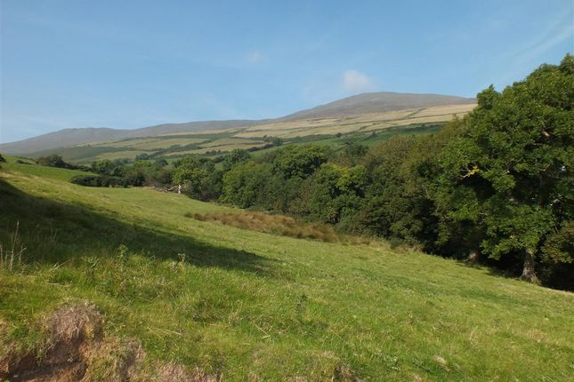 Views of The Old Mill, The Corony, Maughold IM7