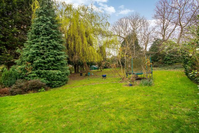 Thumbnail Semi-detached house to rent in Abbots Green, Gravel Hill