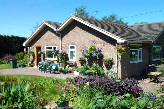Thumbnail Detached bungalow for sale in Southery Road, Feltwell, Thetford