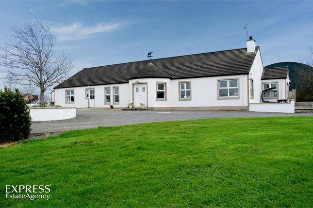 Thumbnail Detached bungalow for sale in Ballyrusley Road, Portaferry, Newtownards, County Down