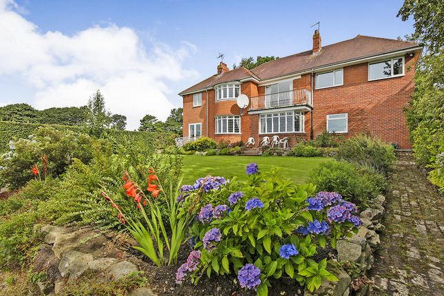 Thumbnail Detached house for sale in Long Garth, Durham
