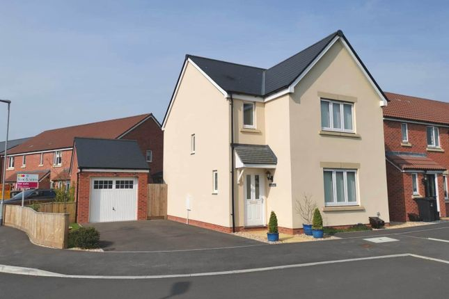 Thumbnail Detached house for sale in Hardys Close, Bathpool, Taunton