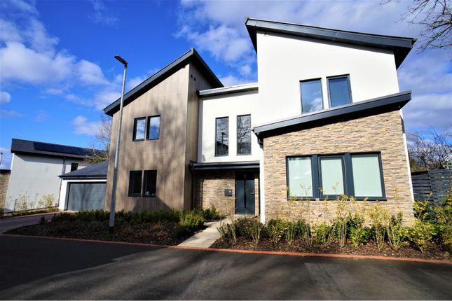Thumbnail Detached house for sale in Garth Gardens, Brampton