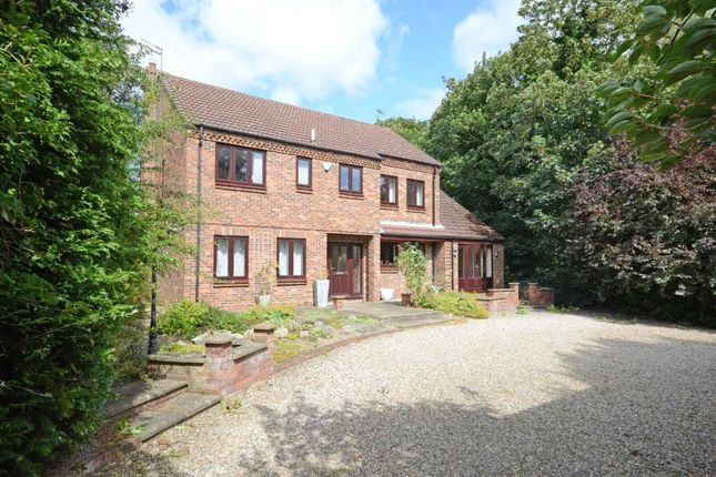 4 bed detached house to rent in Myrtle Avenue, Bishopthorpe, York YO23