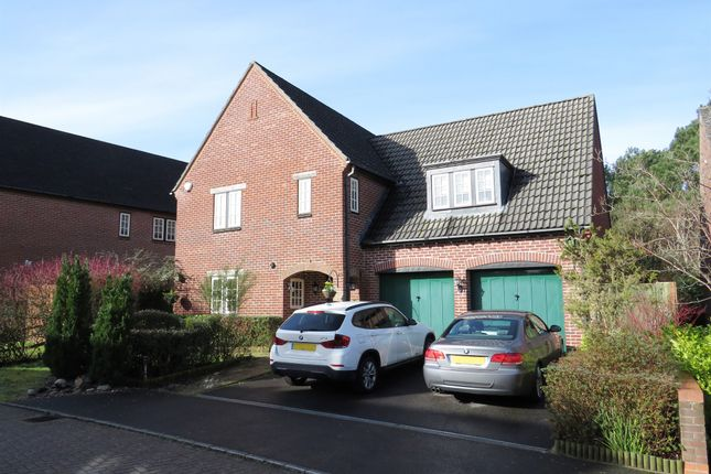 Thumbnail Detached house for sale in Matchams Close, Matchams, Ringwood