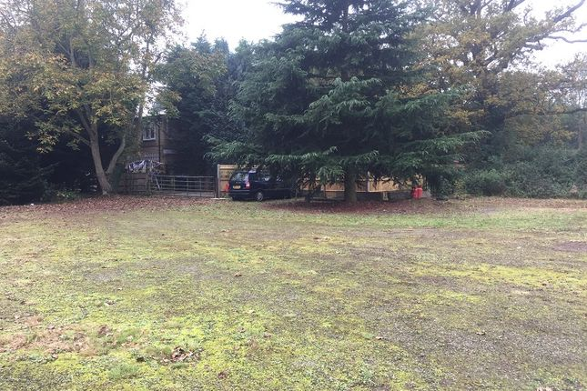 Thumbnail Land to let in Black Lake Farm, Stroude Road, Egham