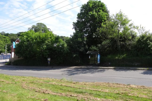 Site From Chapel Street