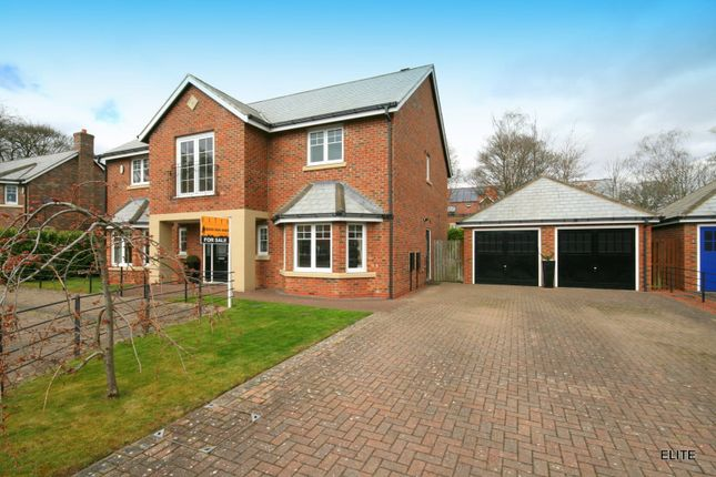 Thumbnail Detached house for sale in Westhouse Avenue, Potters Bank, Durham