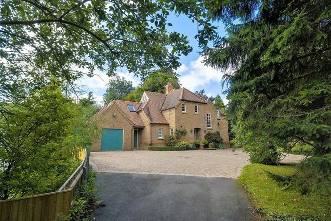 Thumbnail Detached house for sale in Waltham Road, Barnoldby Le Beck