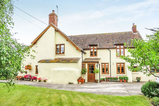 Thumbnail Cottage for sale in Watchet